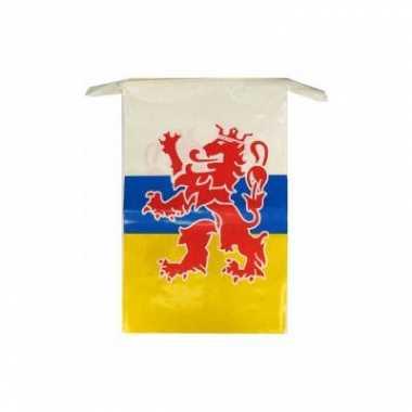 2x plastic vlaggetjes vlaggenlijnen limburg thema 10 meter