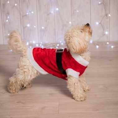 Kerstcarnavalskleding voor de hond