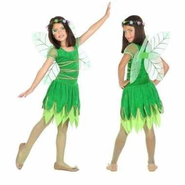 Toverfee/elfje fay verkleed carnavalskleding/jurkje voor meisjes