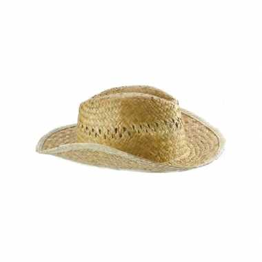 Voordelige rieten cowboyhoed