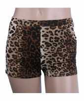 Luipaard print hotpants voor dames