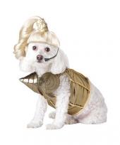 Madonna honden pakje